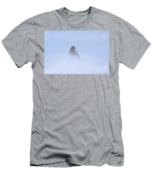 Horned Lark Men's T-Shirt (Athletic Fit)
