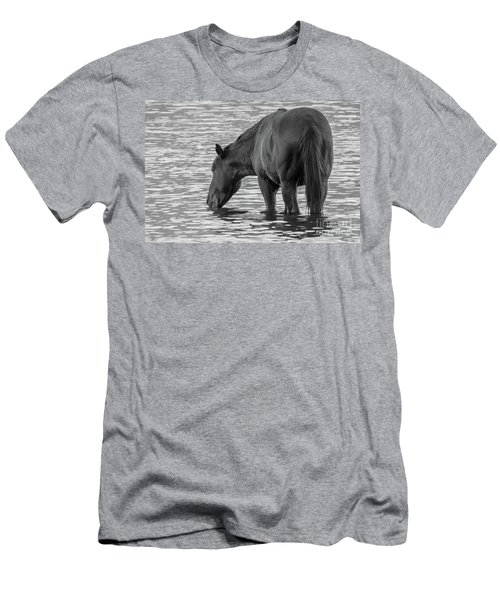 Horse 5 Men's T-Shirt (Athletic Fit)