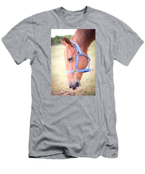Men's T-Shirt (Slim Fit) featuring the photograph Horse Eating Grass by Kelly Hazel