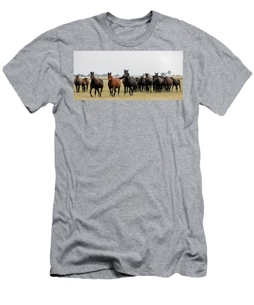 Horse Herd On The Hungarian Puszta Men's T-Shirt (Athletic Fit)