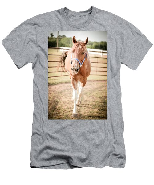 Horse Walking Toward Camera Men's T-Shirt (Athletic Fit)