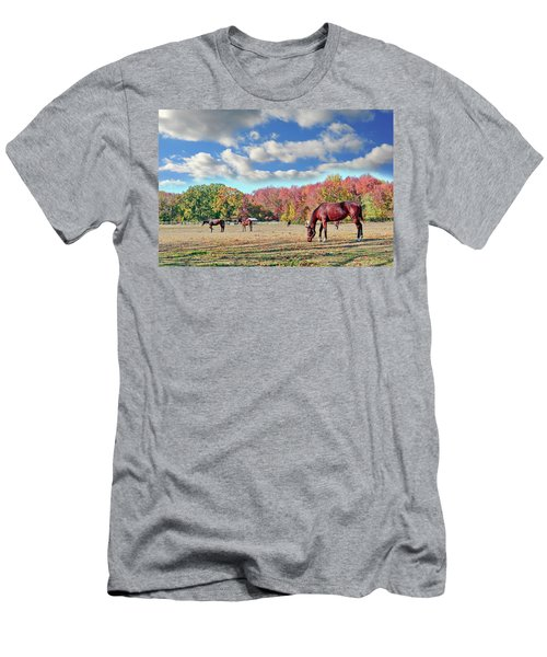 Horses Grazing At A Stable In Maryland Men's T-Shirt (Athletic Fit)