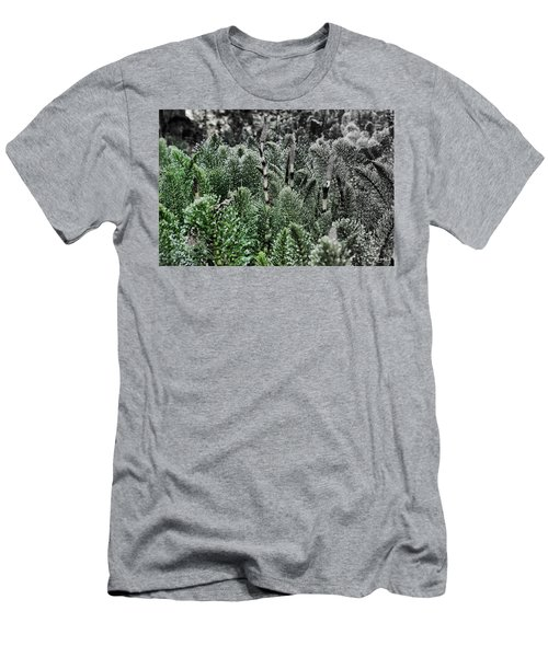 Horsetail Dewpoint Men's T-Shirt (Athletic Fit)