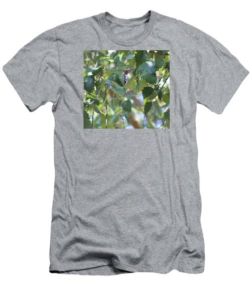 Men's T-Shirt (Slim Fit) featuring the photograph Hummingbird by Debra     Vatalaro
