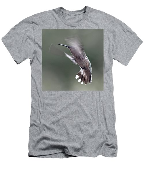 Hummingbird In The Country Men's T-Shirt (Athletic Fit)