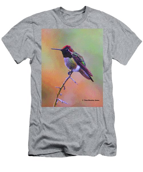 Hummingbird On A Stick Men's T-Shirt (Athletic Fit)