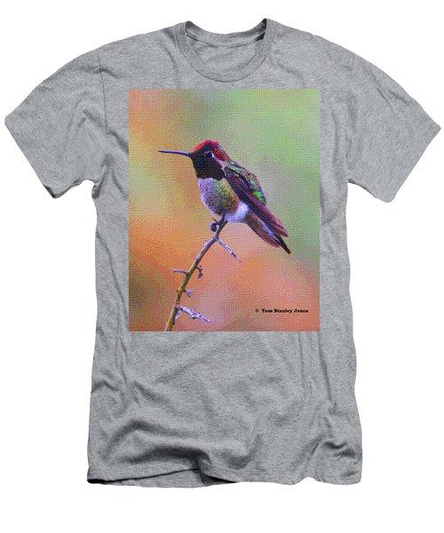 Hummingbird On A Stick Men's T-Shirt (Athletic Fit)