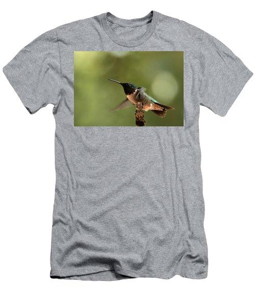 Hummingbird Take-off Men's T-Shirt (Athletic Fit)