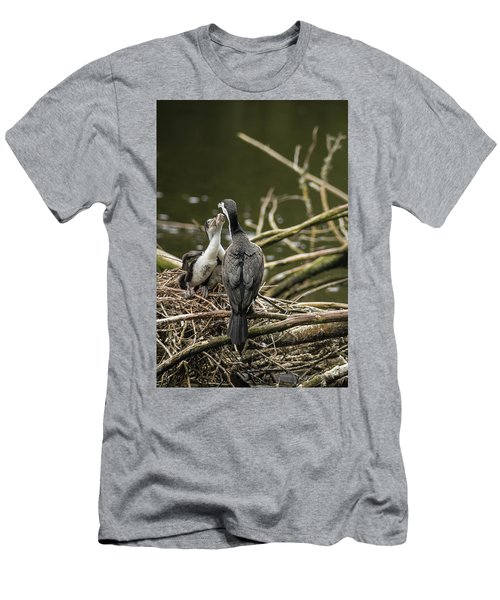 Hungry Pied Shag Chicks Men's T-Shirt (Athletic Fit)
