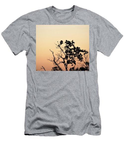 Hush Little Baby Men's T-Shirt (Slim Fit) by John Glass