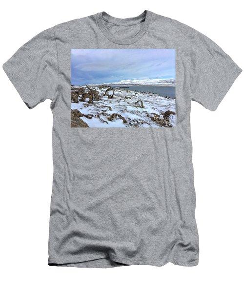 Hvalfjoerdurs Wintersun Men's T-Shirt (Athletic Fit)