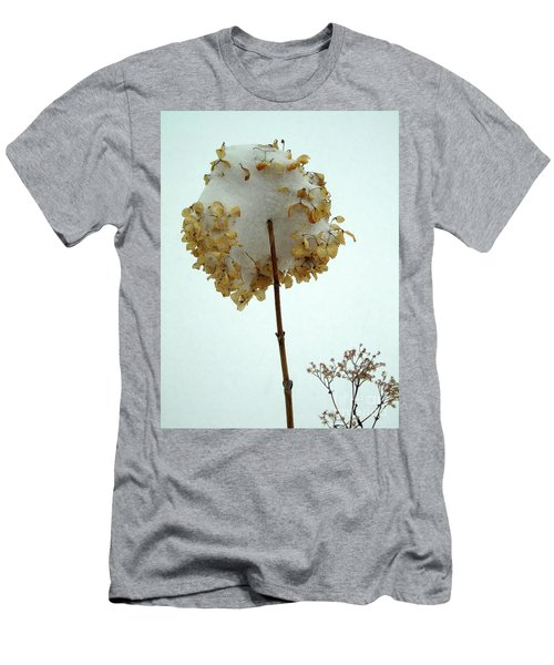Hydrangea Blossom In Snow Men's T-Shirt (Athletic Fit)