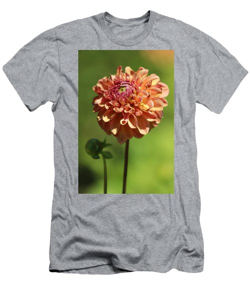 Iced Tea Dahlia In Marzipan And Milano Tones Men's T-Shirt (Athletic Fit)