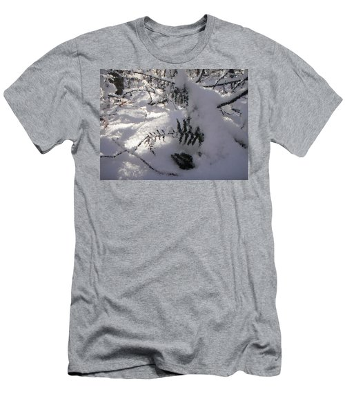 Icy Fern Men's T-Shirt (Athletic Fit)