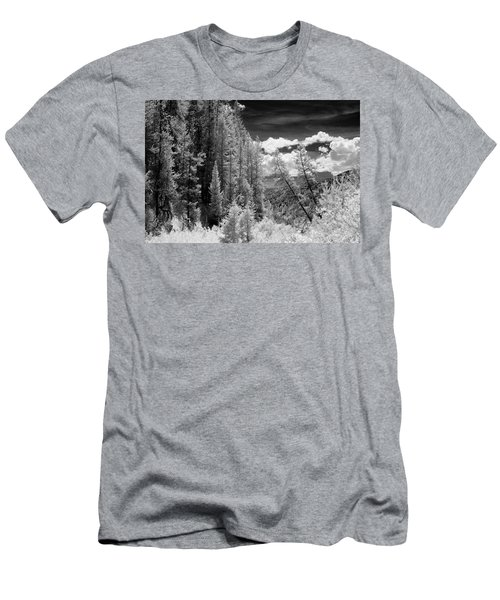 Idaho Passage Men's T-Shirt (Athletic Fit)