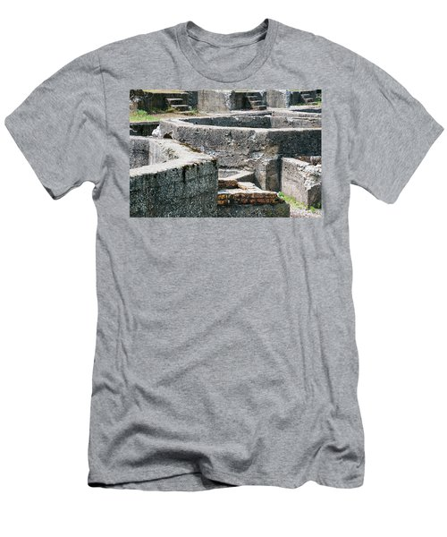 In The Ruins 6 Men's T-Shirt (Athletic Fit)