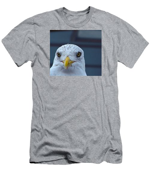 In Your Face Gull Men's T-Shirt (Athletic Fit)