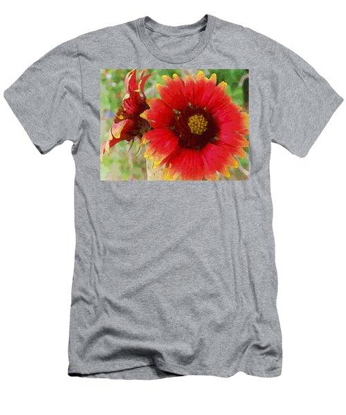 Indian Blanket Flowers Men's T-Shirt (Athletic Fit)
