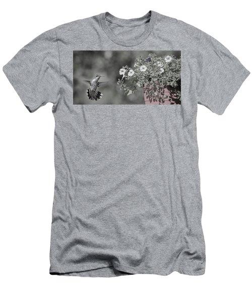 Inquisitive Hummingbird Men's T-Shirt (Athletic Fit)