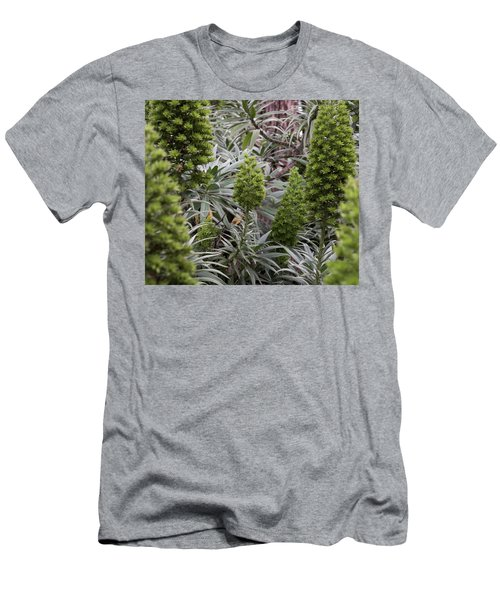 Into The Grove Men's T-Shirt (Athletic Fit)