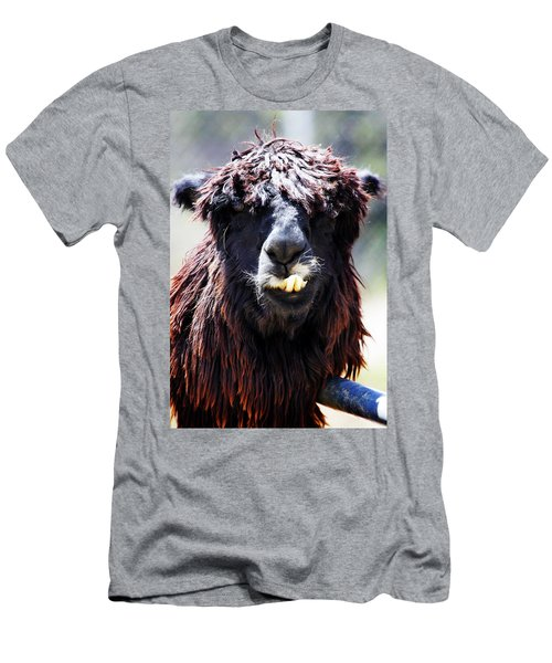 Men's T-Shirt (Slim Fit) featuring the photograph Is Your Mama A Llama? by Anthony Jones