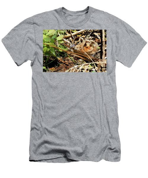 It's A Baby Woodcock Men's T-Shirt (Slim Fit) by Asbed Iskedjian