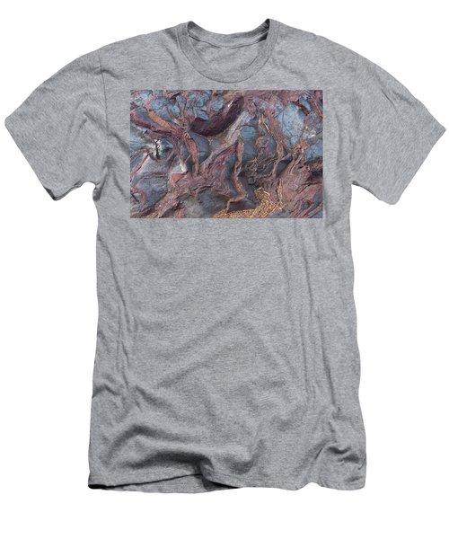 Jaspilite Men's T-Shirt (Athletic Fit)