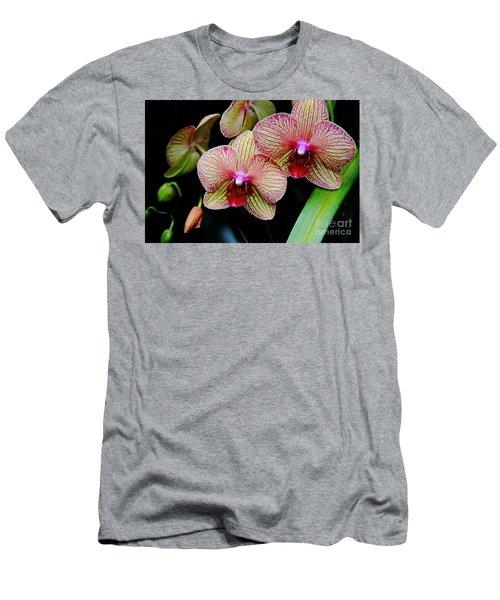 Joy Within Men's T-Shirt (Athletic Fit)