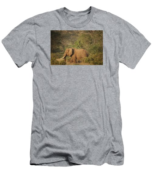 Men's T-Shirt (Slim Fit) featuring the photograph Just Passing Through by Gary Hall