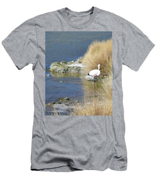 Juvenile Flamingo No. 64 Men's T-Shirt (Slim Fit) by Sandy Taylor