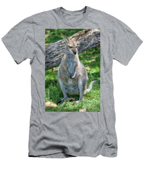 Men's T-Shirt (Slim Fit) featuring the photograph Kangaroo by Patricia Hofmeester