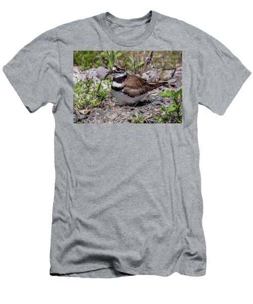 Killdeer Men's T-Shirt (Athletic Fit)