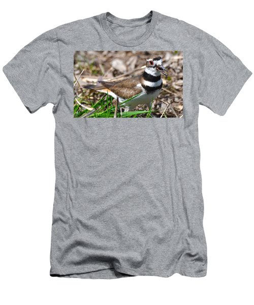 Killdeer Mother Men's T-Shirt (Athletic Fit)