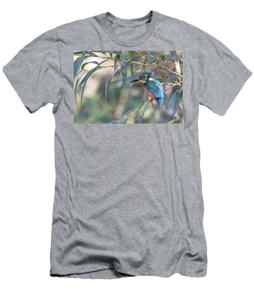 Kingfisher In Willow Men's T-Shirt (Athletic Fit)