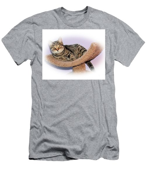 Men's T-Shirt (Slim Fit) featuring the photograph Kitty Perch by Debbie Stahre