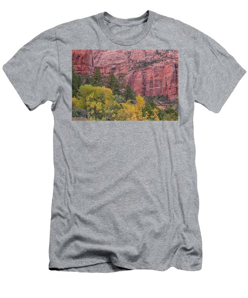 Kolob Canyon Colors Men's T-Shirt (Athletic Fit)