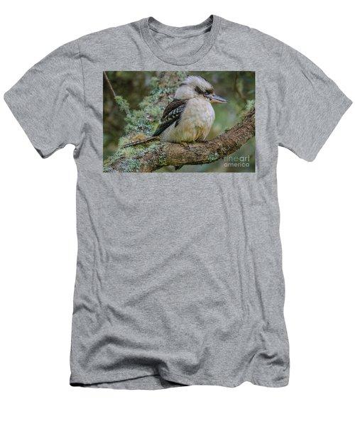 Kookaburra 4 Men's T-Shirt (Athletic Fit)