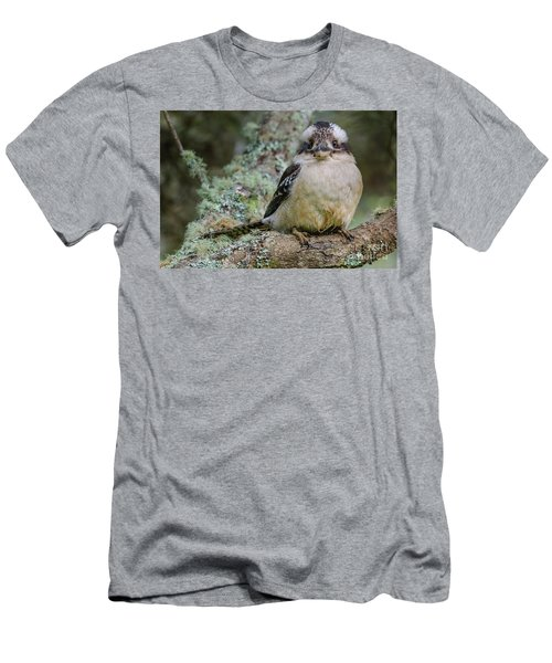 Kookaburra 3 Men's T-Shirt (Athletic Fit)