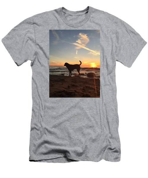 Labrador Dreams Men's T-Shirt (Athletic Fit)