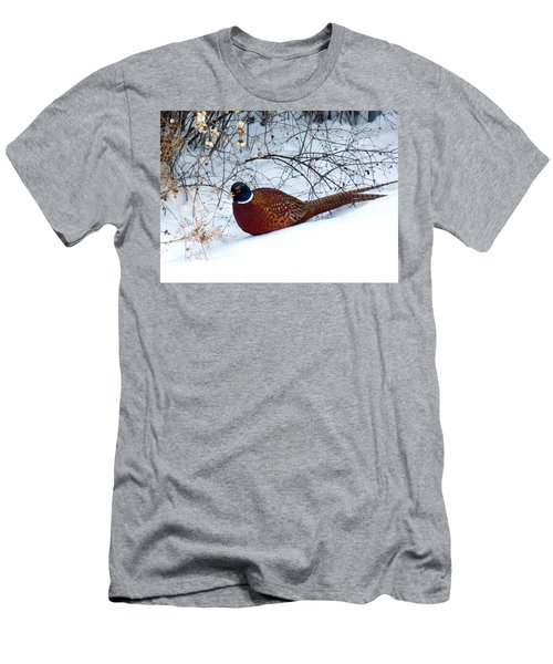 Men's T-Shirt (Slim Fit) featuring the photograph Lake Country Pheasant by Will Borden