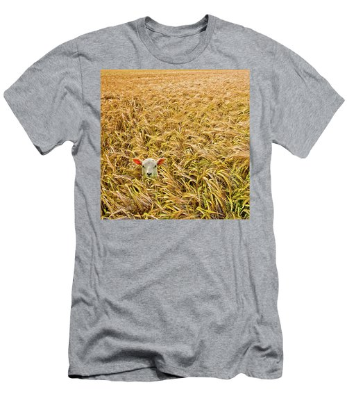Lamb With Barley Men's T-Shirt (Athletic Fit)