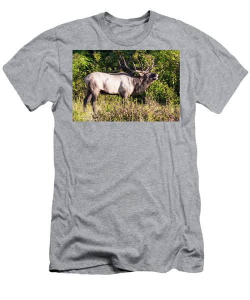 Large Bull Elk Bugling Men's T-Shirt (Athletic Fit)