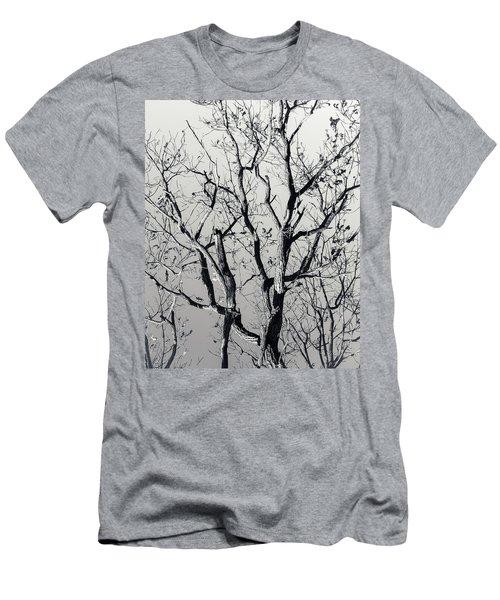 Last Light Oak Men's T-Shirt (Athletic Fit)