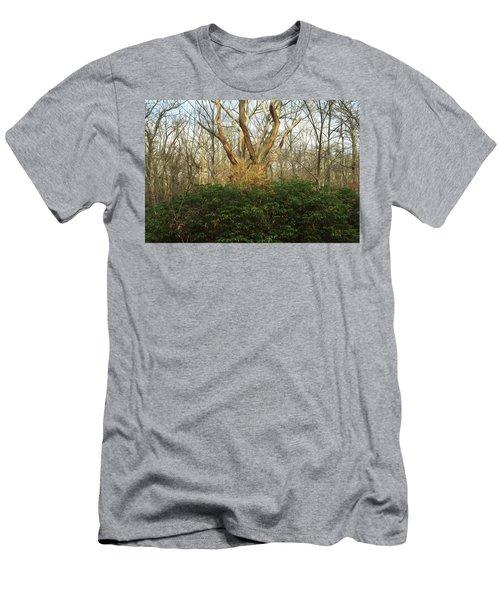 Laurel Men's T-Shirt (Athletic Fit)