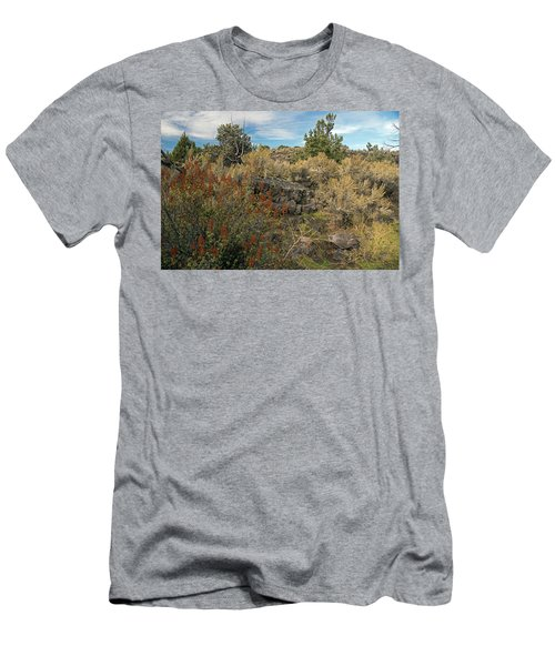 Lava Formations Men's T-Shirt (Athletic Fit)