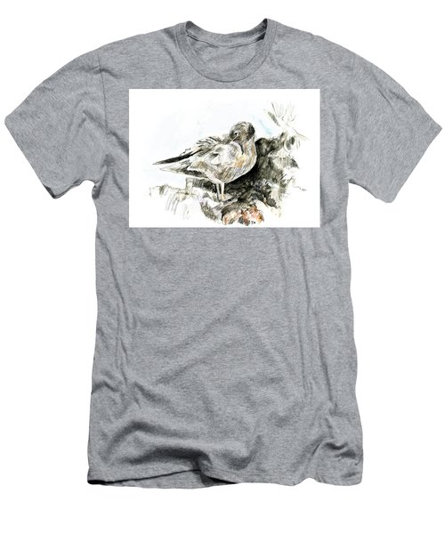 Lava Gull Men's T-Shirt (Athletic Fit)
