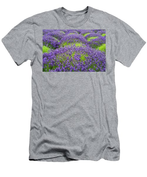 Lavender In Blooming Men's T-Shirt (Athletic Fit)