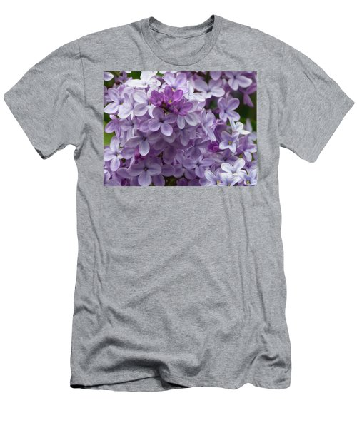 Lavender Lilacs Men's T-Shirt (Athletic Fit)