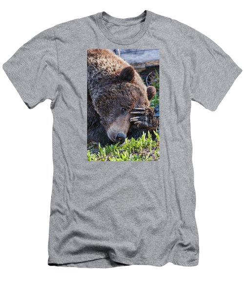 Men's T-Shirt (Athletic Fit) featuring the photograph Lazy Bear by Wesley Aston