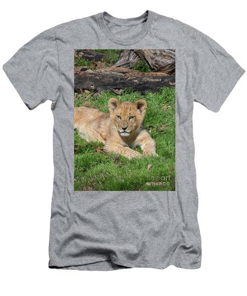 Lazy Little Leo Men's T-Shirt (Athletic Fit)